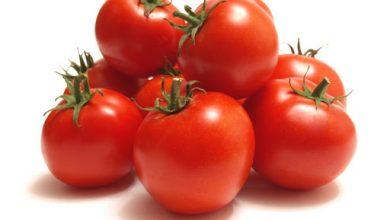 كيفية عمل الطماطم المبتلة